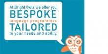 Bright Owls adult language classes