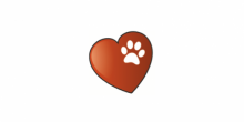 finding-furever-homes-valentines-day