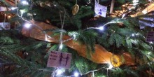 Photograph of Signal's sensory tree at St Chad's Christmas Tree Festival