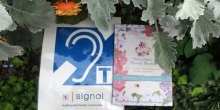 Photo of hearing loop sign and Shrewsbury Flower Show programme in flower bed