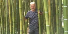 Trees and gardening expert Tony Russell will be giving a talk in Shrewsbury on November 13